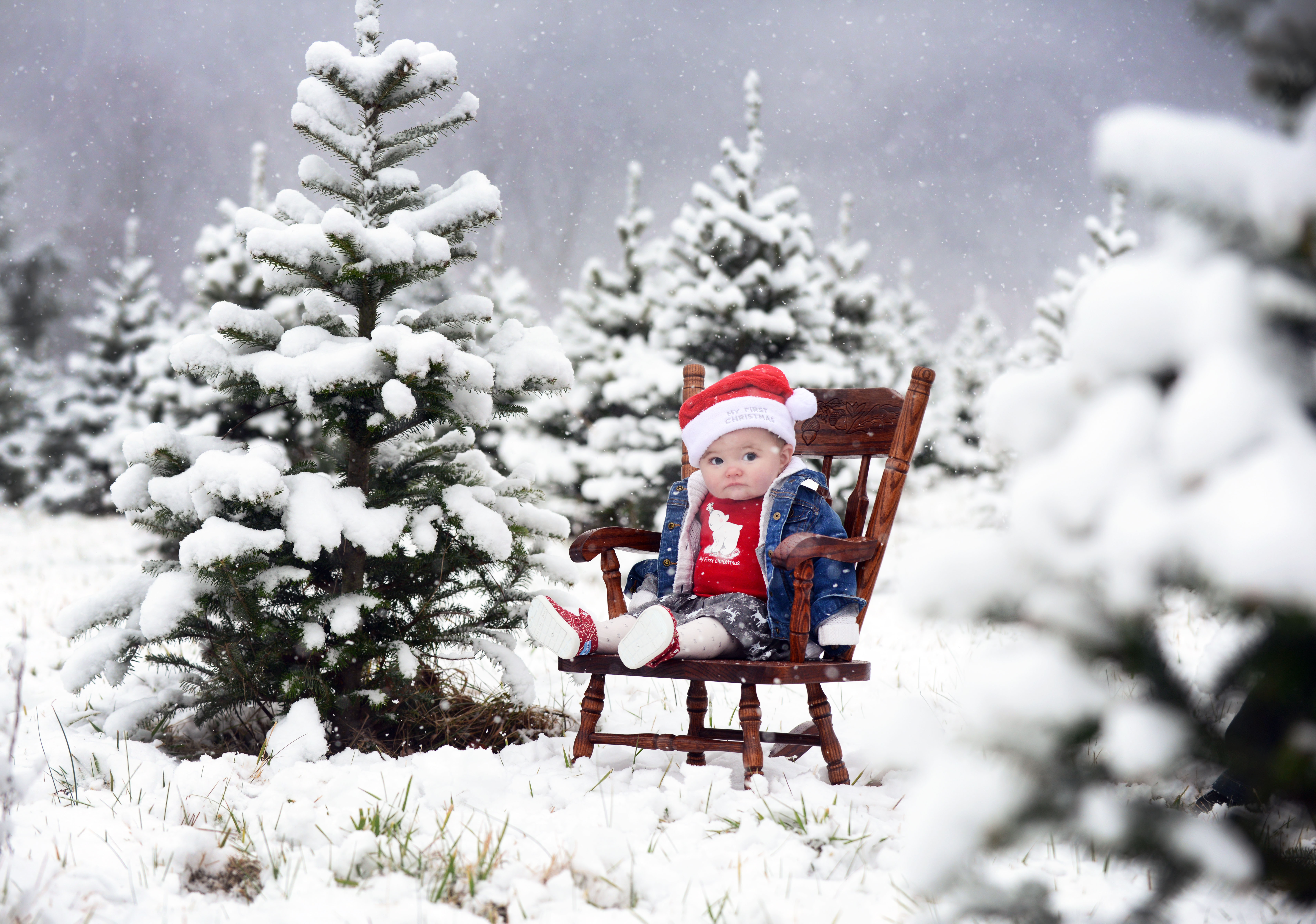 Family Portraits in the Snow — Flemings Christmas Tree Farm ...