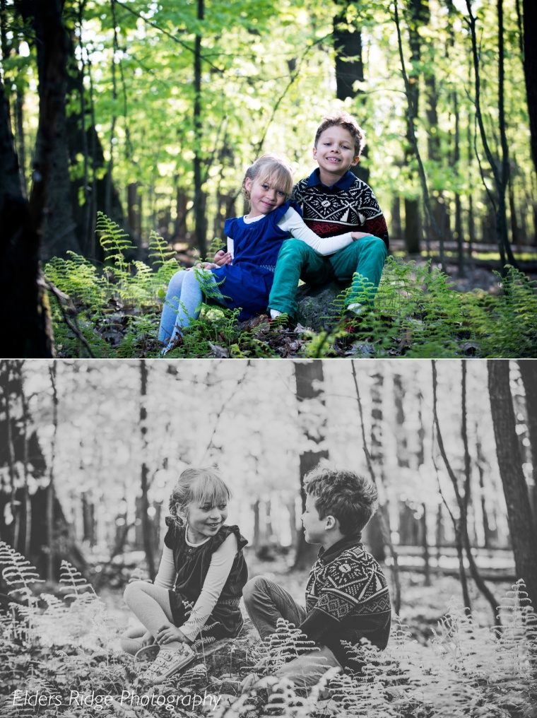 brother and sister portraits in the woods