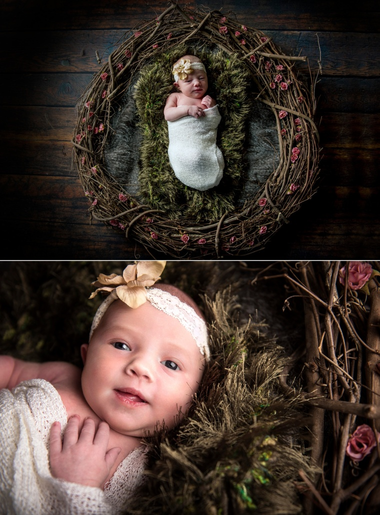 newborn girl portraits pittsburgh newborn photographer